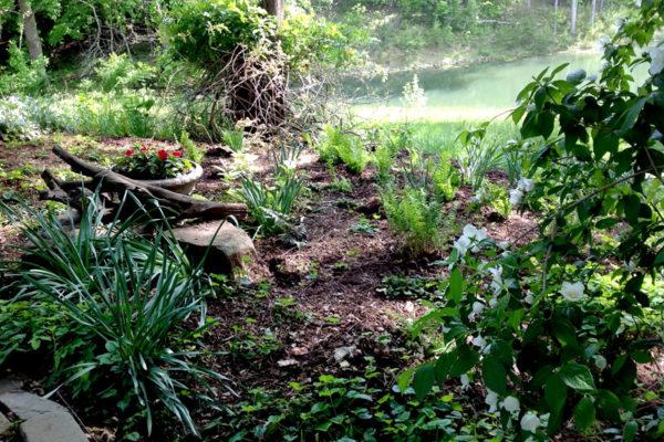 Nido Shade Garden5