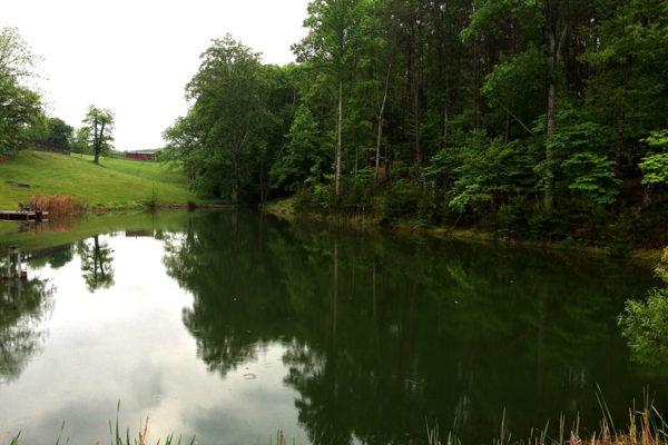 3-more-lake-photos