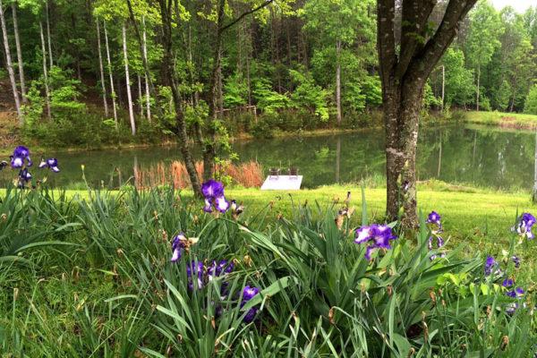3-more-lake-photos-again