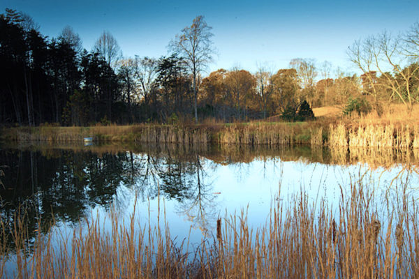 lake.autumn