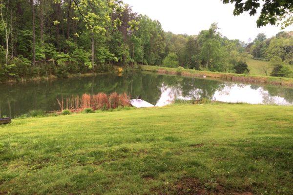 lake.summer